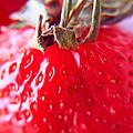 Strawberries  by Lali Kacharava