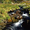 Stream In Mountain by IB Photography
