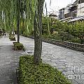 Street In Kyoto Japan by Jacek Malipan