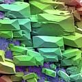Sugar Crystals by Steve Gschmeissner