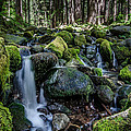 Sul Duc Creek by Puget  Exposure