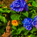 Summer Flower Garden by Jeff Folger