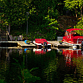 Summer Morning On Muskoka River by Les Palenik
