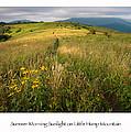 Summer Morning Sunlight On Little Hump Mountain by Keith Clontz