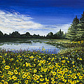 Summer Susans by Mary Palmer