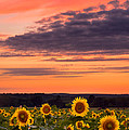 Sun Over Sun by Michael Blanchette
