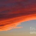Sundown by Susan Herber