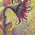 Sunflower by Randy Ross