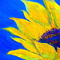 Sunflower In Blue by Sue Jacobi