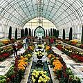 Sunken Garden Como Conservatory by Amanda Stadther