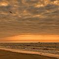 Sunrise by Diana Powell