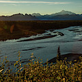 Sunrise On Mnt Denali, Trapper Creek by Panoramic Images