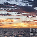 Sunrise Over The Sea Of Cortez by Liz Leyden