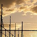 Sunset Fence by Tim Hester