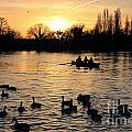 Sunset On The Thames At Walton by Julia Gavin