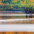 Sunset Reflections On Boreal Forest Lake In Yukon by Stephan Pietzko