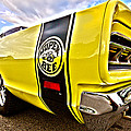 Super Close Super Bee  by Gordon Dean II