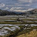 Swaledale Yorks Dales by Trevor Kersley