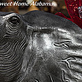 Sweet Home Alabama by Kathy Clark
