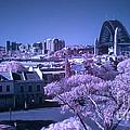 Sydney Harbour Bridge by Ken Lee