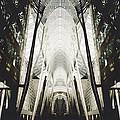 Symmetry by Natasha Marco
