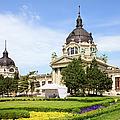 Szechenyi Baths In Budapest by Artur Bogacki