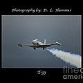 T-33 by Dennis Hammer