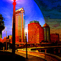 Tampa History In Reflection by David Lee Thompson