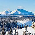 Taiga Winter Snow Landscape Yukon Territory Canada by Stephan Pietzko