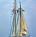 Tall Ship Harvey Gamage by Skip Willits