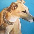 Tan Greyhound by Howard Scherer