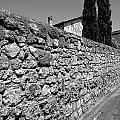 Tarquinia Muro Di Cinta Con Cipressi by Giuseppe Cocco