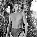 Tarzan The Ape Man, Johnny Weissmuller by Everett