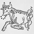Taurus  by Italian School