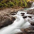 Tawhai Falls In Tongariro Np New Zealand by Stephan Pietzko