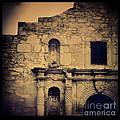 The Alamo by Jill Battaglia