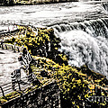 The American Falls by Jim Lepard