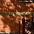 The Bike  by Marysue Ryan