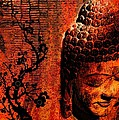 The Buddha by Shannon Story