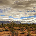 The Desert Southwest  by Saija  Lehtonen