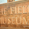 The Field Museum Sign In Chicago Illinois by Paul Velgos
