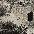 The Garden Tomb by Thomas R Fletcher