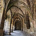 The Gothic Cloisters Inside The Crusader Castle Of Krak Des Chevaliers Syria by Robert Preston
