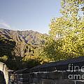 The Great Wall 1064 by Terri Winkler