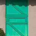 The Green Door by Dennis Reagan
