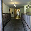 The Hall  by Amy Hosp