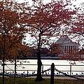 The Jefferson Memorial by Lois  Ivancin Tavaf