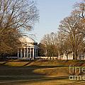 The Lawn University Of Virginia by Jason O Watson
