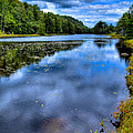 The Majestic Bald Mountain Pond by David Patterson