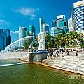 The Merlion  Fountain - Singapore by Luciano Mortula